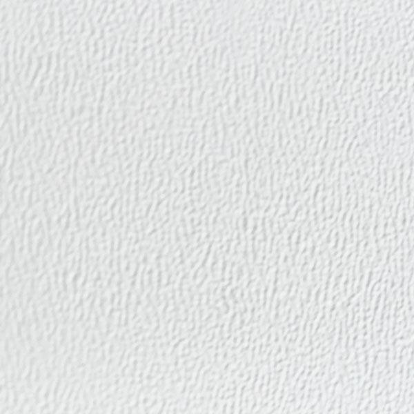 arcticwhite.jpg